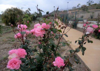 residencial-puerto-de-la-luz-rosas-15