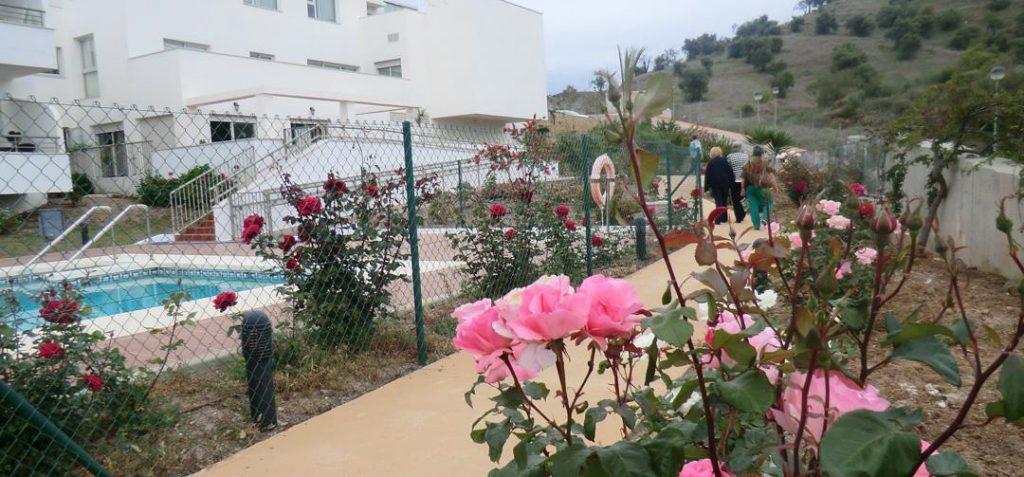 Cohousing y actividades Residencial