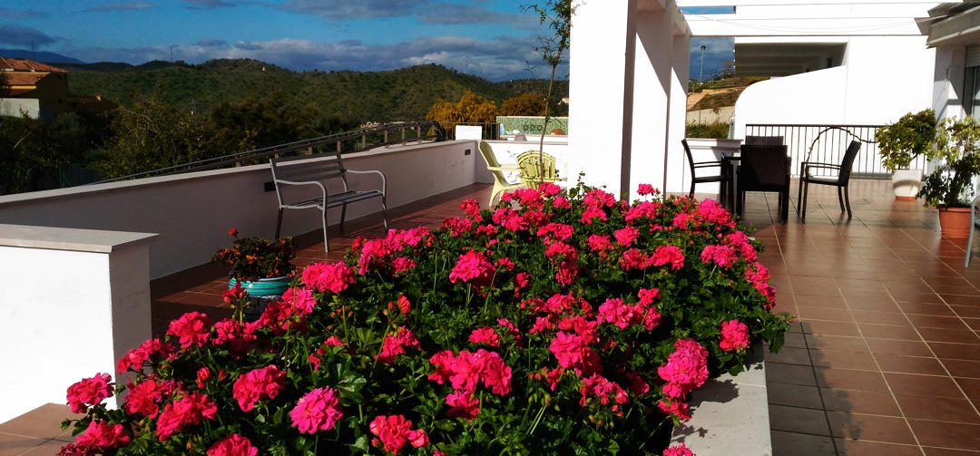Benefits of Cohousing for elderly in Andalucía