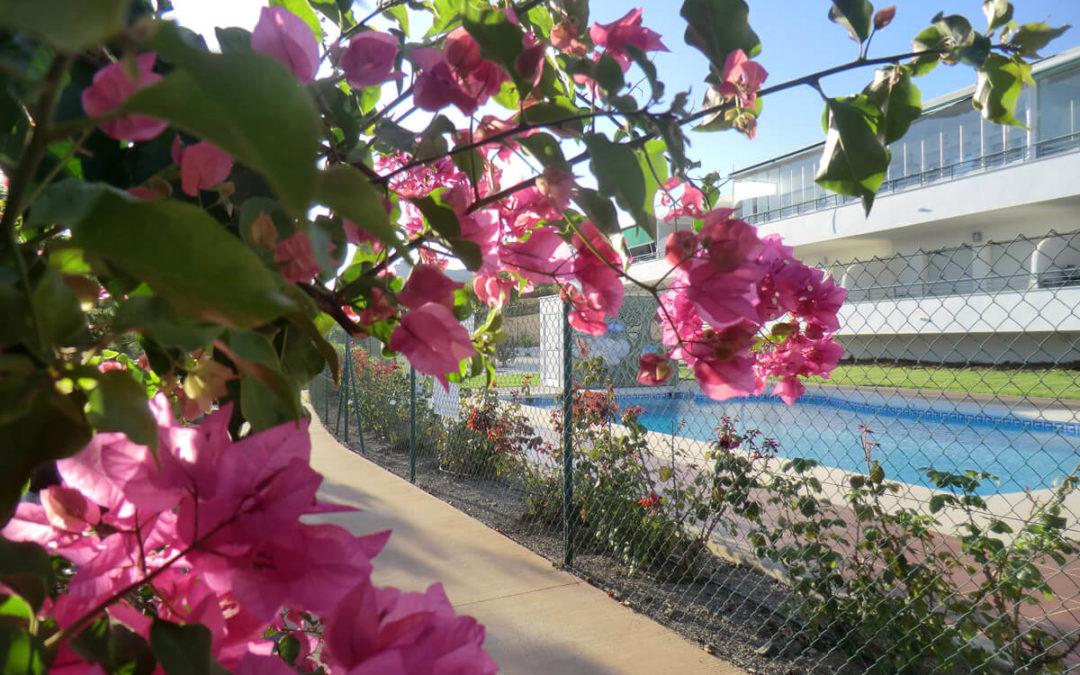 Senior cohousing, otra forma de entender la jubilación